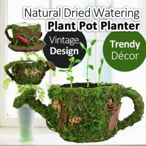 Natural Dried Plant Watering Can Pot Planter