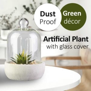 Artificial Cactus with Glass Cover