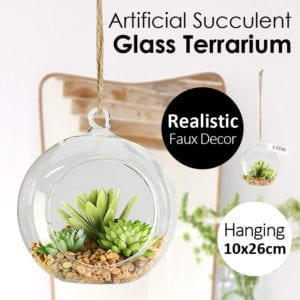 Artificial Succulent Hanging Round Glass Terrarium