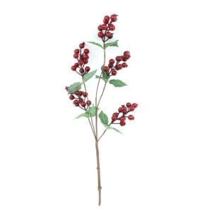 Christmas Holly Berries Branch
